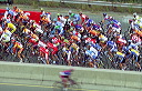 Hamilton 2003 Road World Championships - Elite Men Road Race