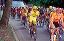 Prodir riders in main field
